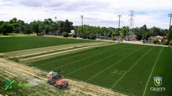 Lakewood Memorial Field USA