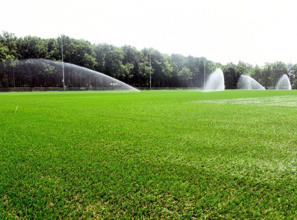 Papendal - trainingground Vitesse